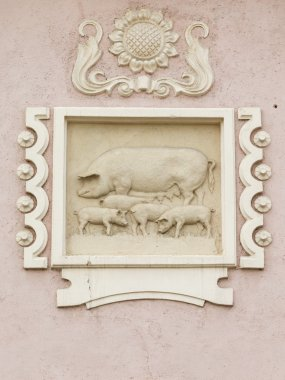 relief with pigs