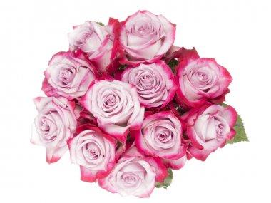 bouquet of crimson roses