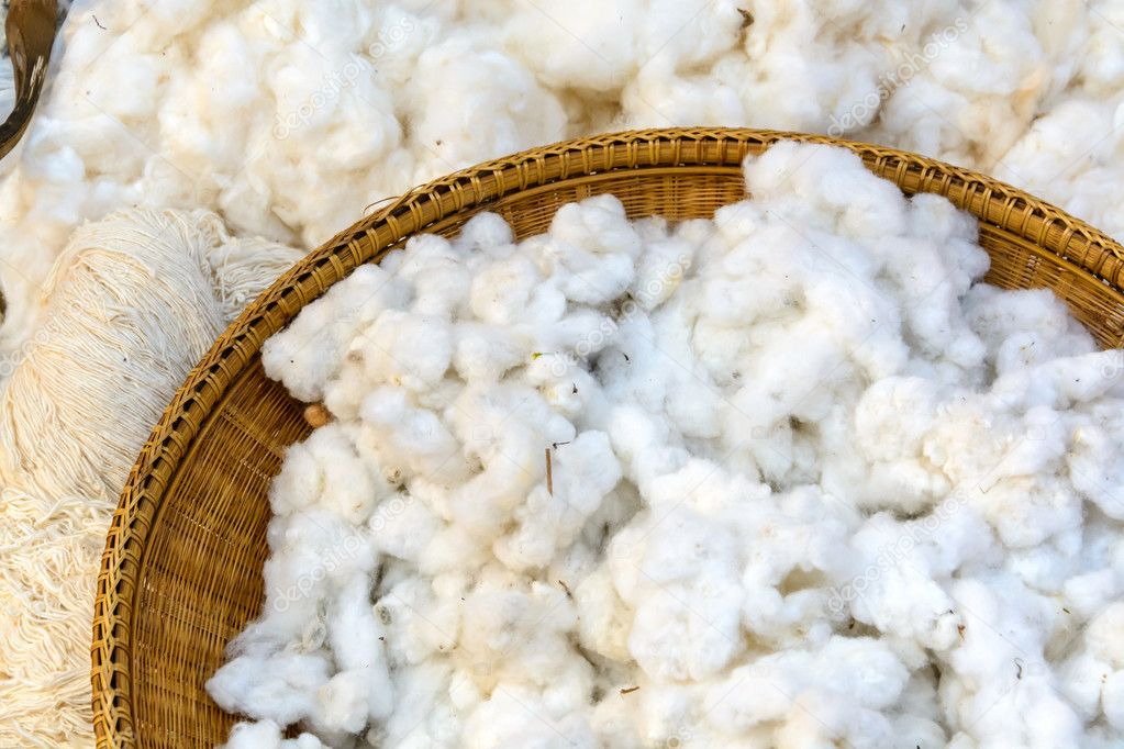 Cotton prepare for make cotton thread
