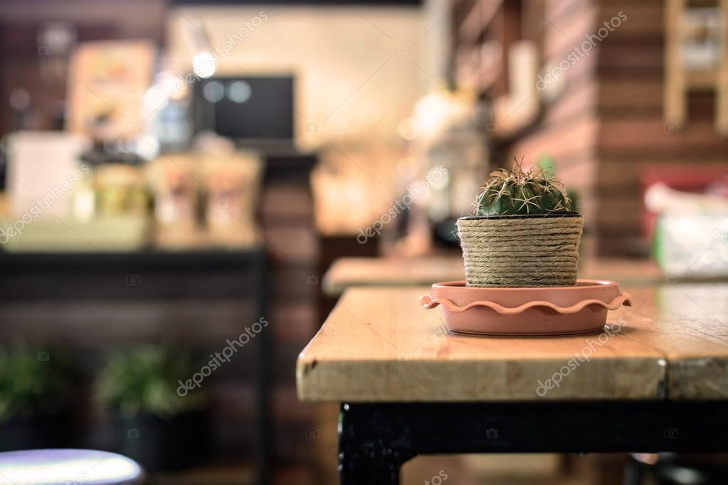 small cactus on the table in coffee shop
