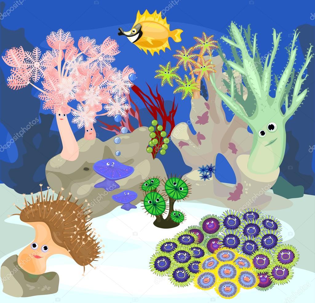 inhabitants of marine aquarium
