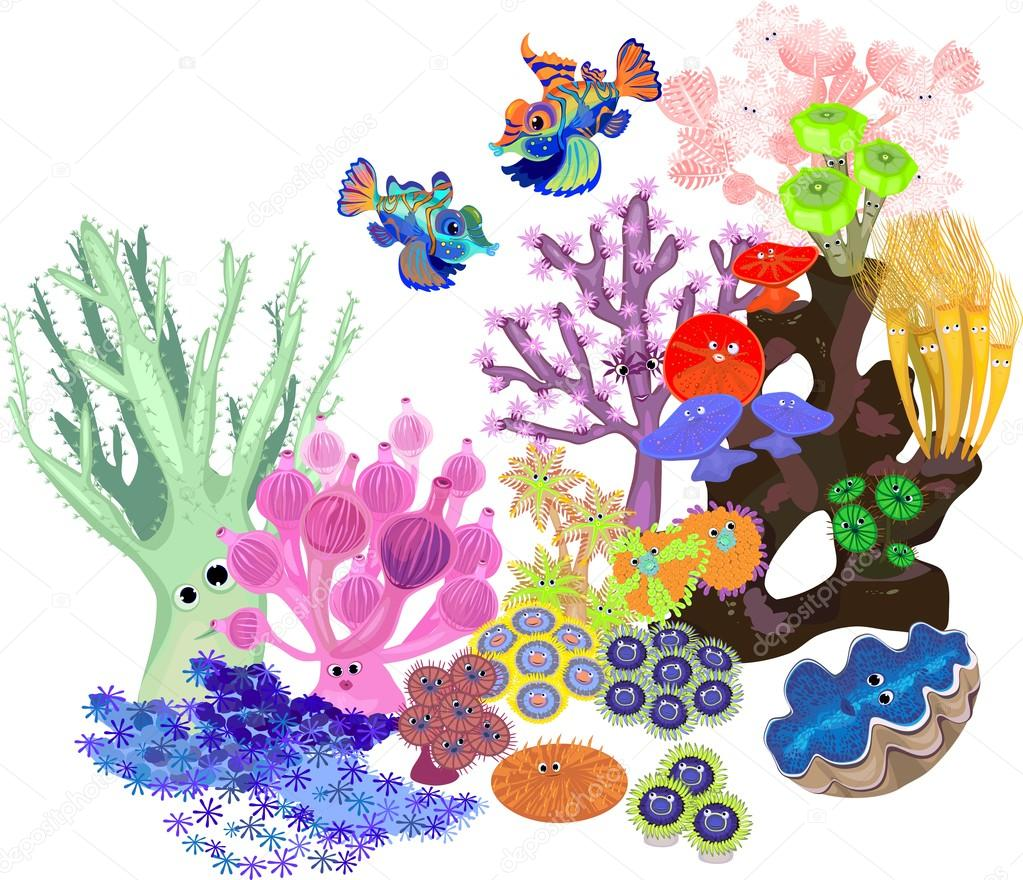 Underwater coral reef with fish on white background