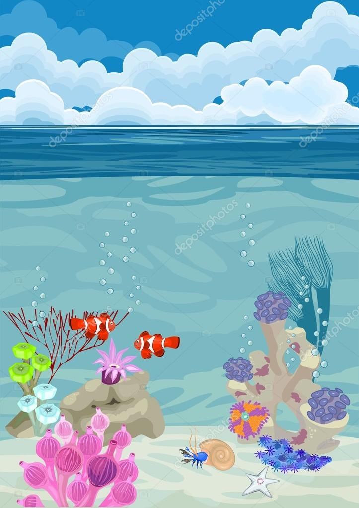 underwater landscape background with different corals and clown fish