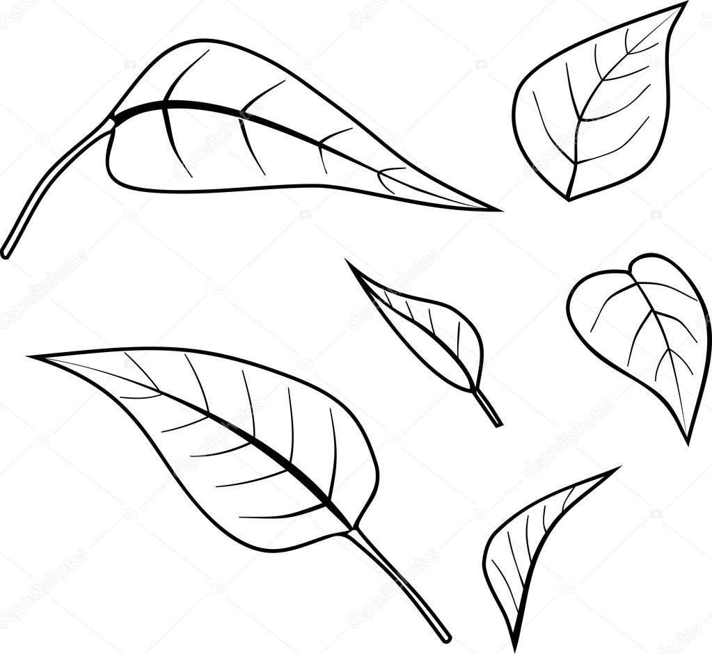 Malvorlagen mit Blättern — Stockvektor © mariaflaya #111415422