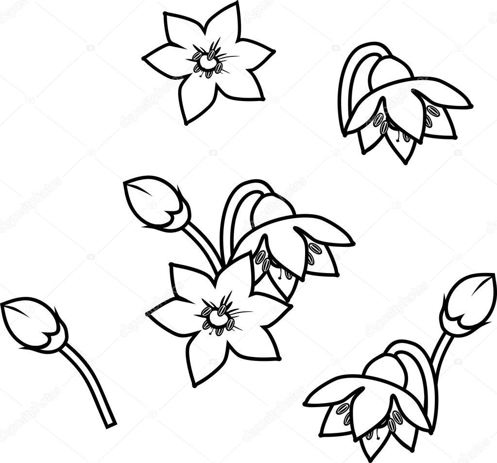 Página para colorear con flores de pimiento — Archivo Imágenes ...