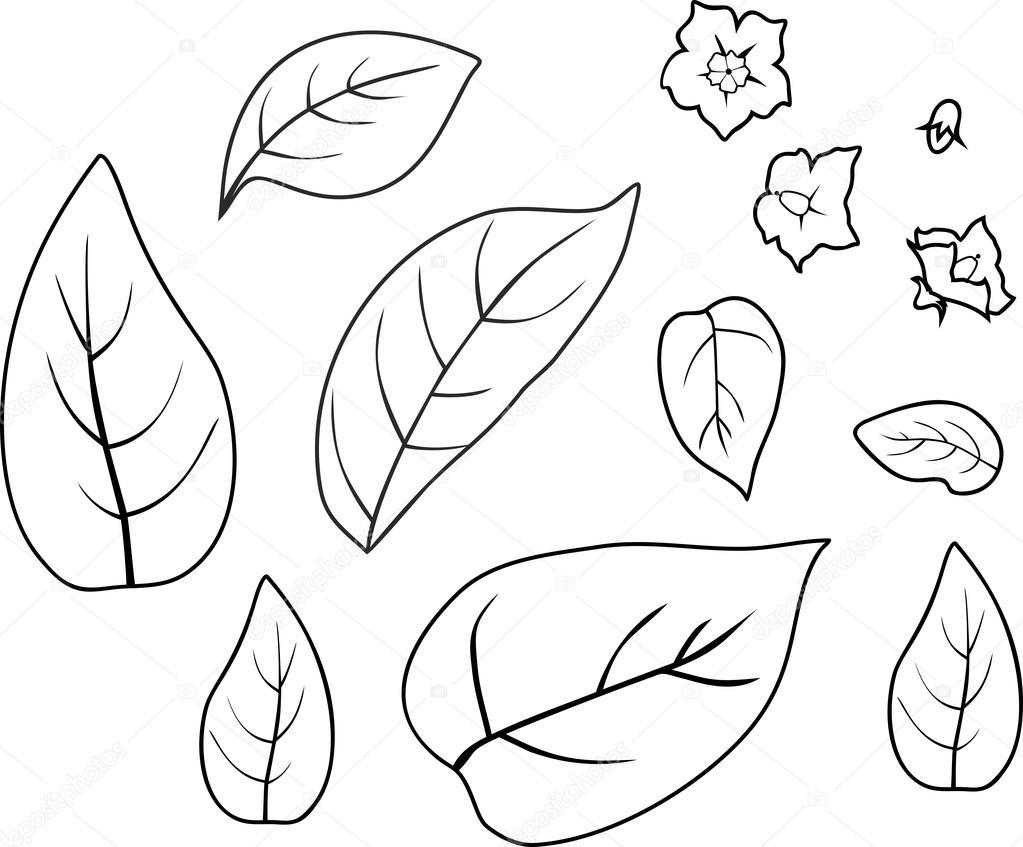 Yaprak Ve çiçek Ile Boyama Stok Vektör Mariaflaya 115400368