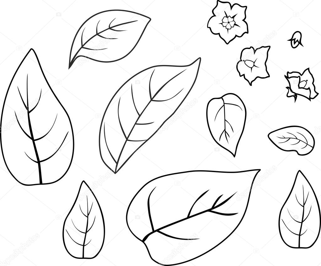 kleurplaat met bladeren en bloemen stockvector