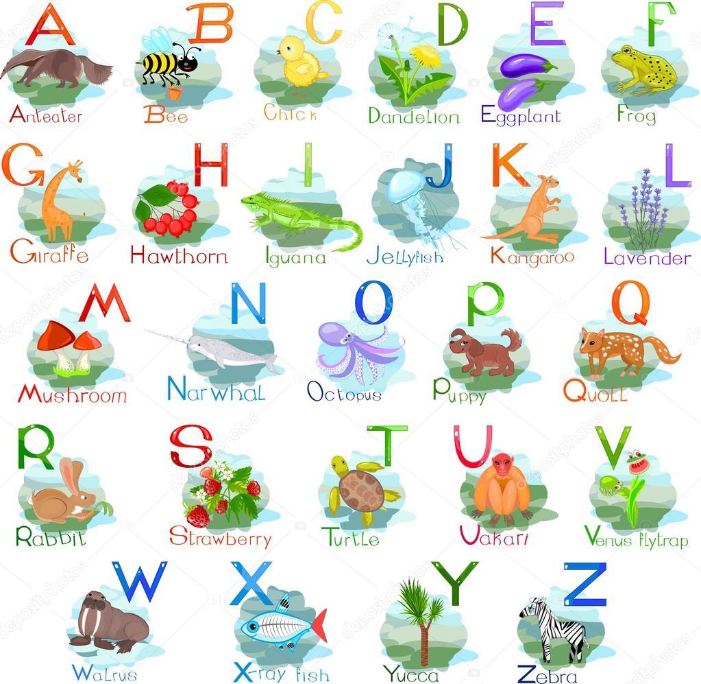 Populares Alfabeto com animais e plantas — Vetor de Stock © mariaflaya #87448752 UH27
