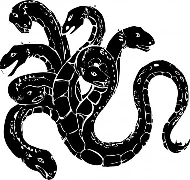 Hydra on white background