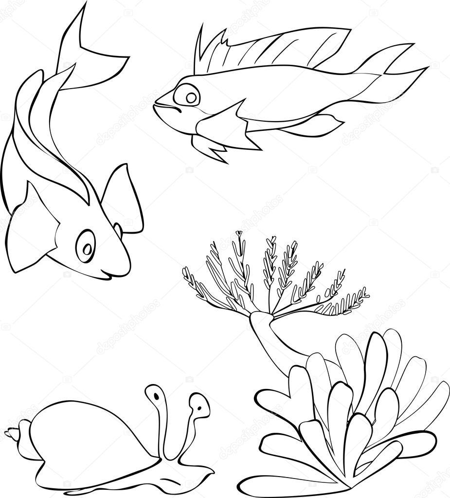 Disegni Da Colorare Con I Pesci Tropicali
