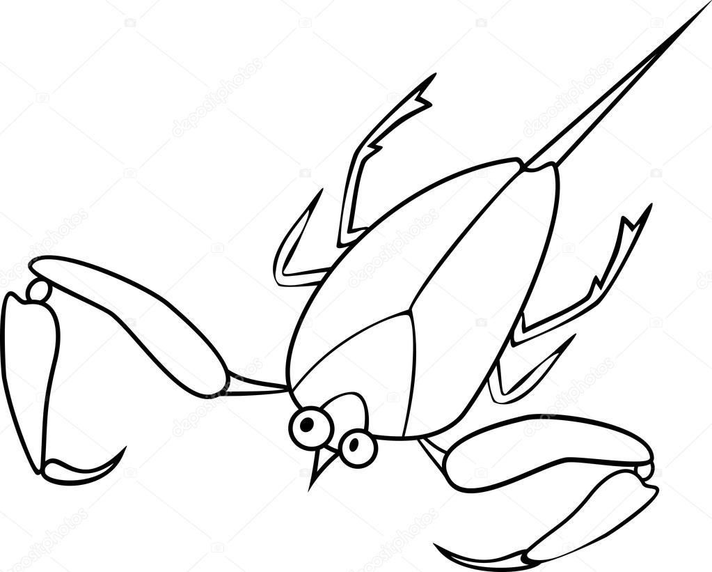 Imágenes Dibujo Escorpion Para Colorear Escorpión De Agua