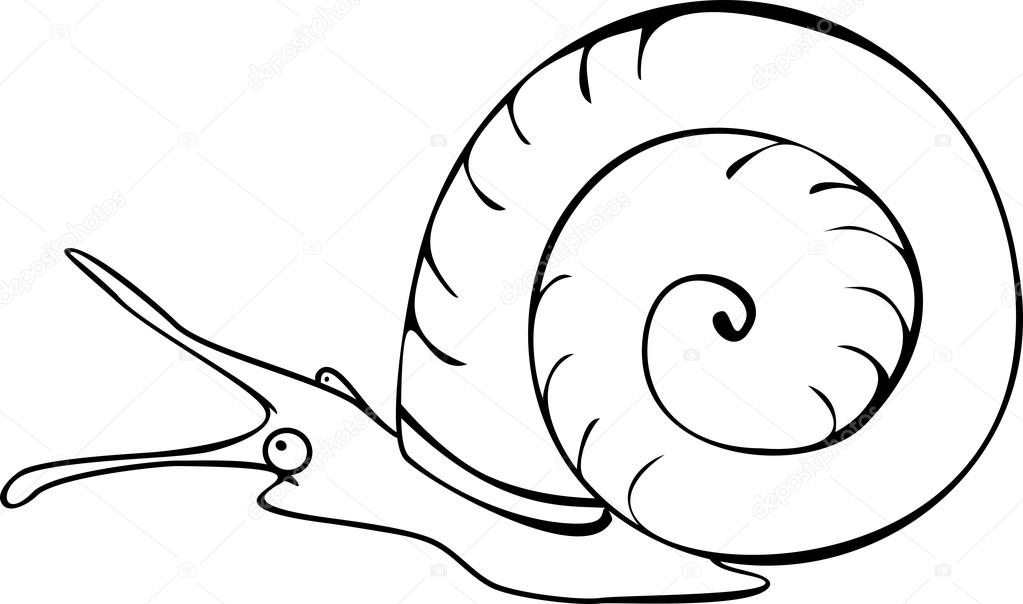 Coloring Page Freshwater Snail Stock Vector C Mariaflaya 88190534