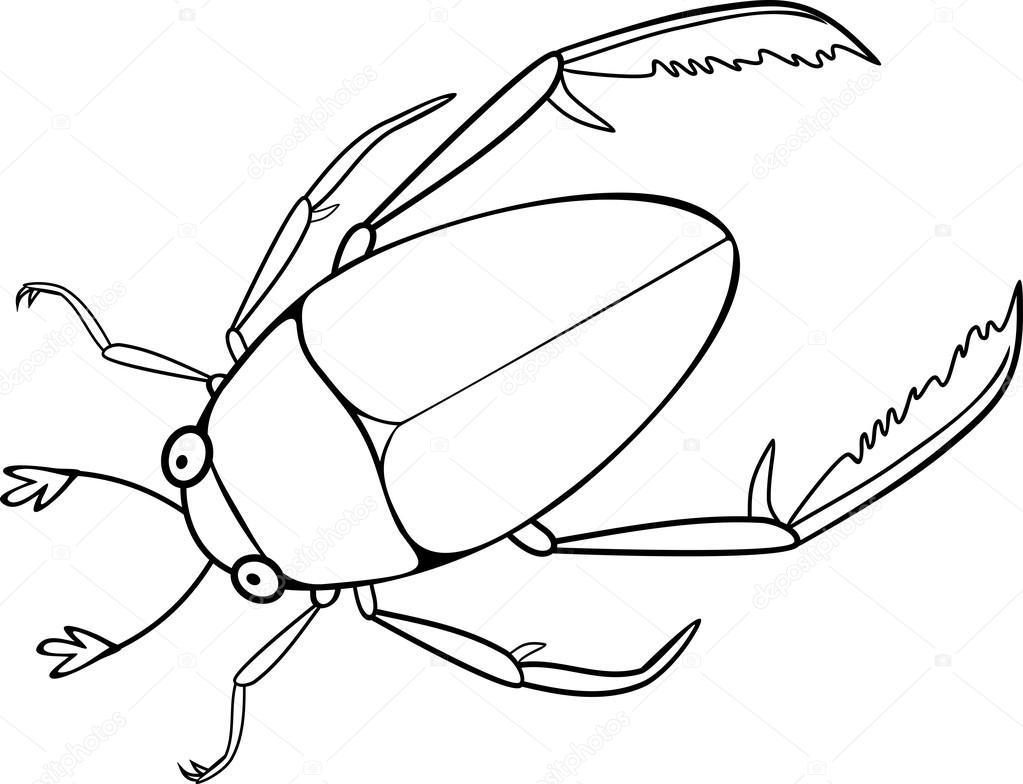 Página para colorear con hydrophilidae — Archivo Imágenes ...