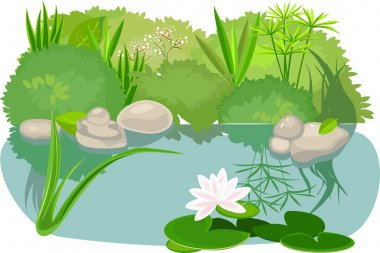Pond landsaping on white background