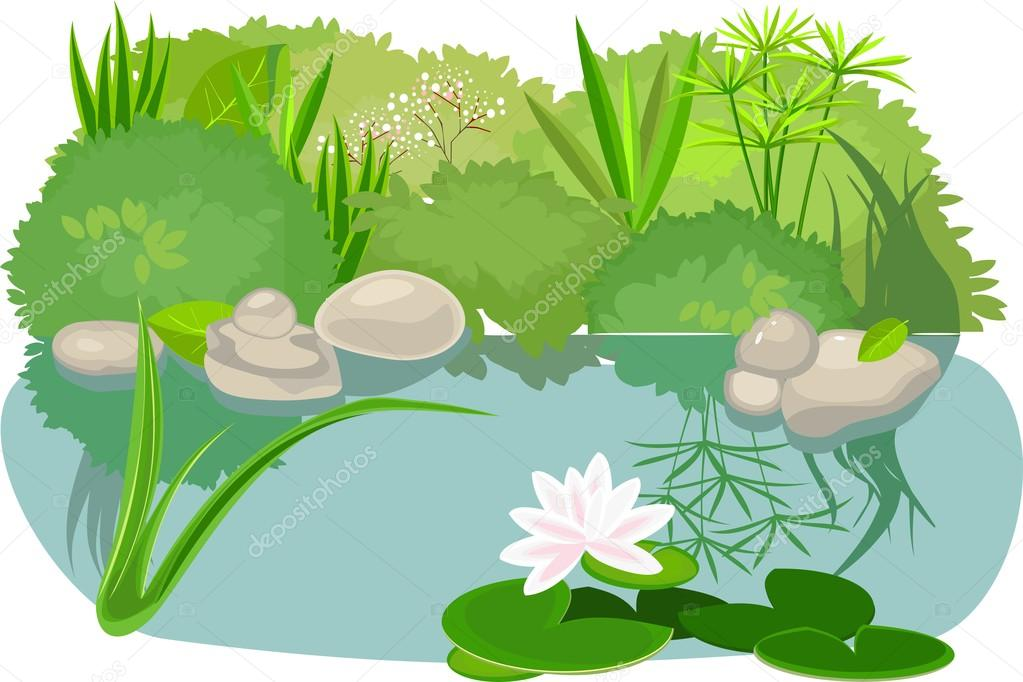 Pond landsaping on white background