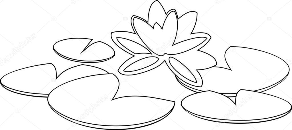 Coloriage Fleur De Nenuphar.Coloriage Avec Nenuphar Image Vectorielle Mariaflaya