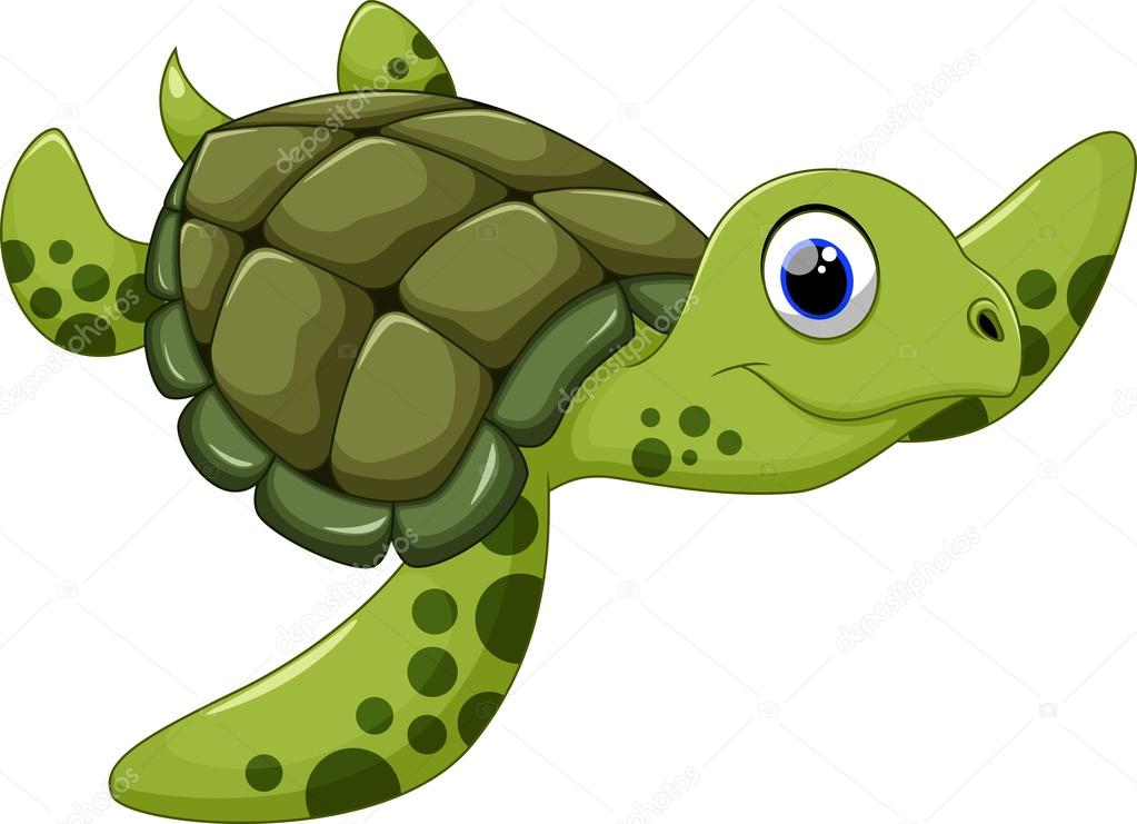cute pictures of sea turtles