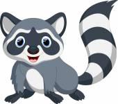 Photo Cute raccoon cartoon
