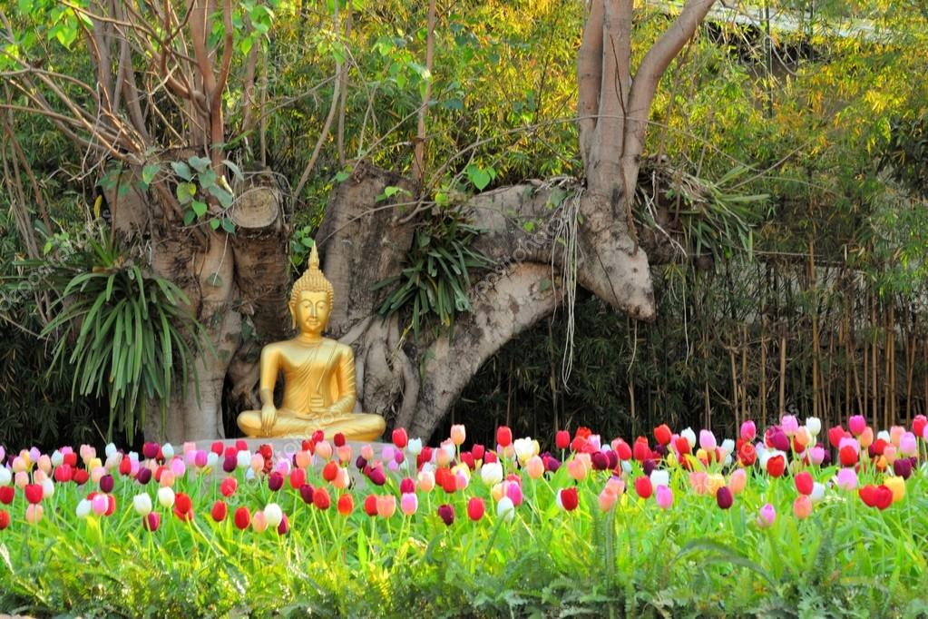 Buddha in meditation among flowers