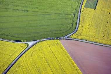 Fields and roads from above