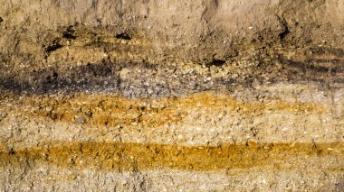 Soil texture and layers