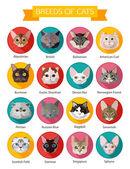 Rassen von Katzen Ikonen