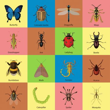 Set of insects flat style design icons. Butterfly, Colorado beetle, Dragonfly, Wasp, Grasshopper, Ant, Ladybug, Beetle, Bumblebee, Moth, Scorpio, Acarus, Fly, Caterpillar, Spider, Mosquito. stock vector