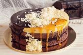Fotografie Romaantic Kuchen mit Schokoladenglasur, Creme Blumen und Mango-pa