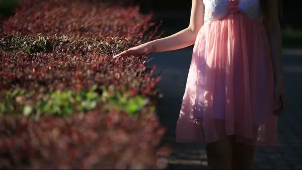 Mladá žena v růžových šatech letní pěší uličkou zahrada dotýká řez keřů s rukou