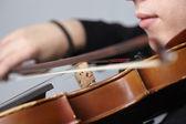 Fényképek Ember játszik hegedű