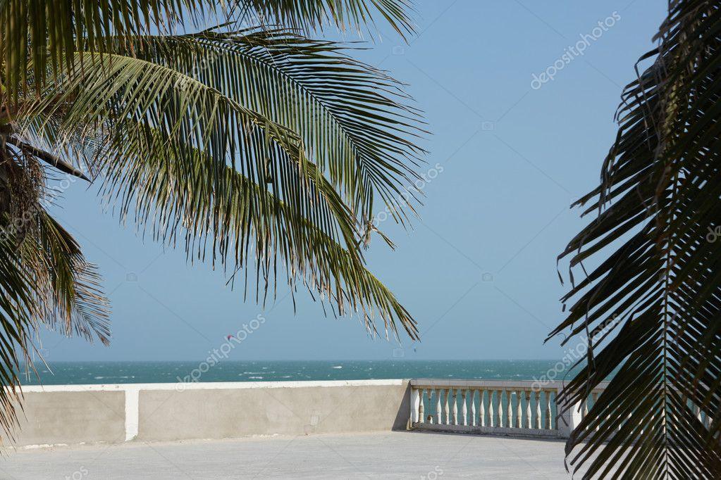 Tropical sea beach with palm trees