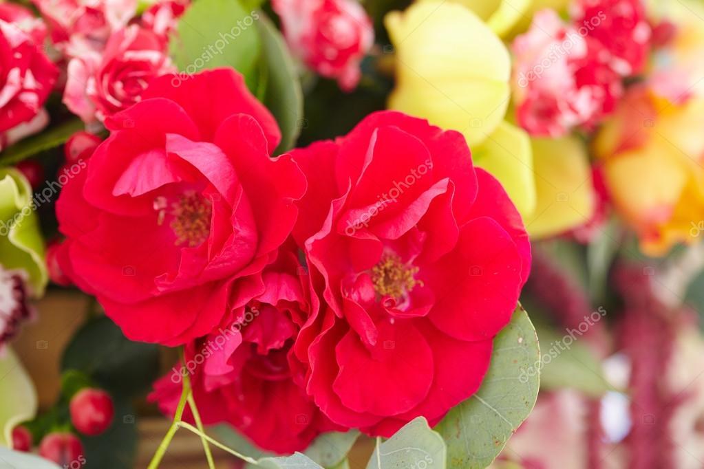 Blumenstrauß rot, gelb, weiss — Stockfoto © nikolodion #85396014