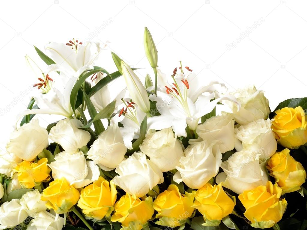 Composition is multicolored flowers different grades lilies roses composition is multicolored flowers different grades lilies roses and blank space for your text on a white background photo by softsigns izmirmasajfo