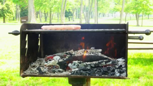 Barbecue grill steak