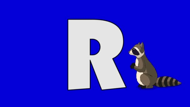 Letter R and Raccoon (foreground)