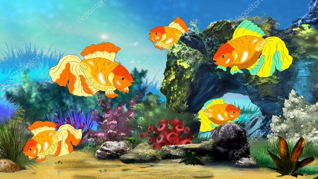 Imágenes Peceras Hermosas Peces De Colores Nadando En Una Pecera