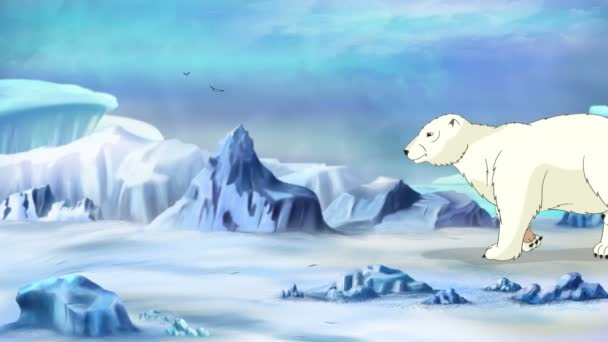 Lední medvěd v Arktidě