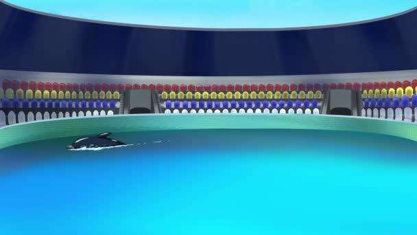 Delfin im Delfinarium