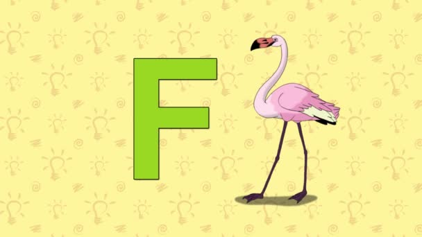 Flamingo. English ZOO Alphabet - letter F