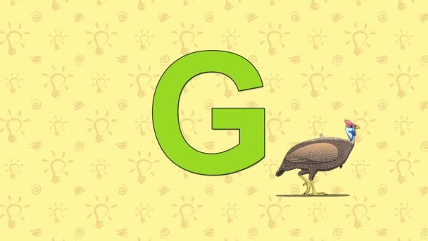 Guineafowl. English ZOO Alphabet - letter G