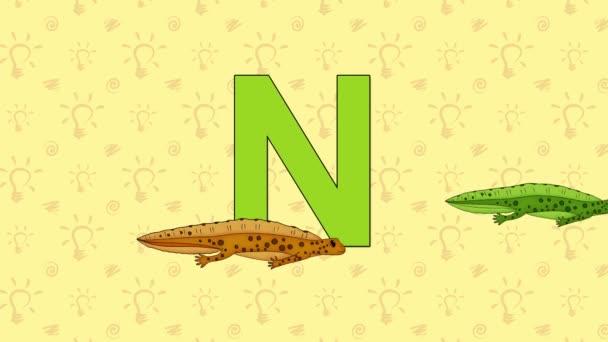 Newt. English ZOO Alphabet - letter N