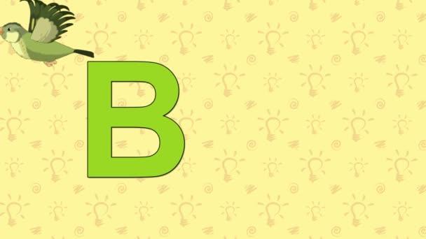 Bird. English ZOO Alphabet - letter B