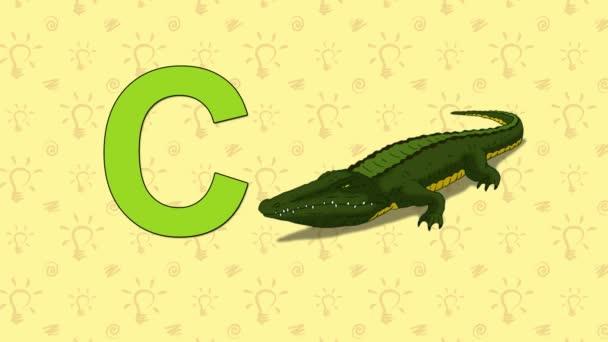 Crocodile. English ZOO Alphabet - letter C
