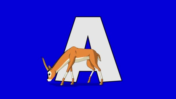 Letter A and Antelope (foreground)