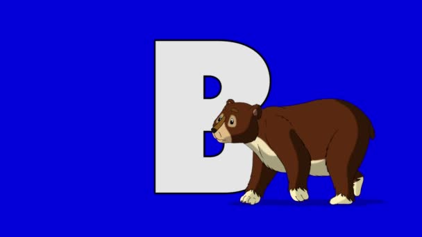 Letter B and Bear (foreground)
