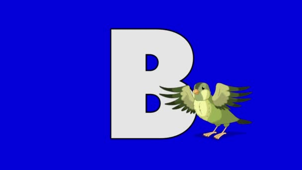 Letter B and Bird (foreground)