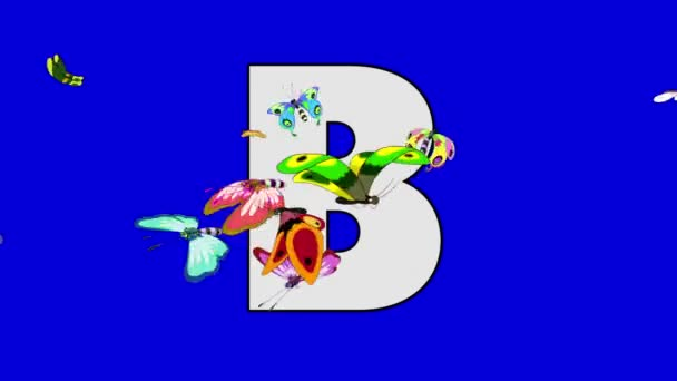 Letter B and Butterfly (foreground)