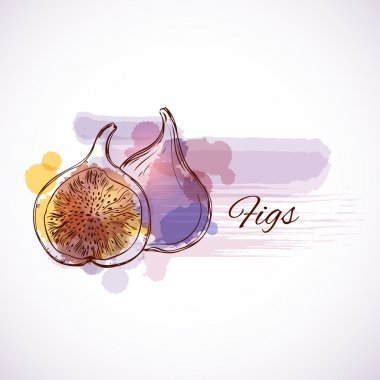figs fruits - label