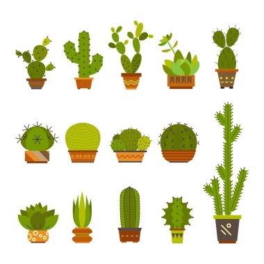 set of color cartoon cactus