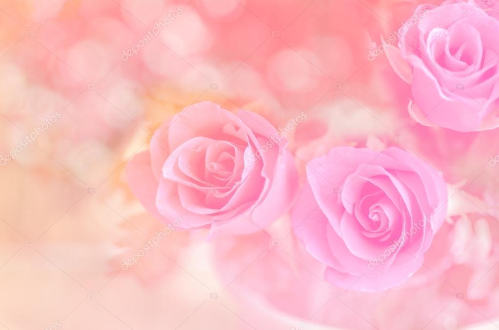 Fondo Rosas Rosadas Rosas En El Fondo Rosa Foto De Stock